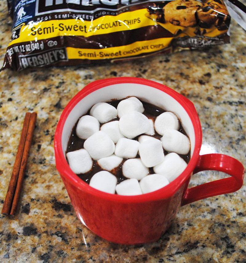 Homemade Hot Chocolate with Marshmallows  Recipe Treasure
