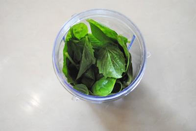 Homemade Basil Pesto | Ingredients | Recipe Treasure 1